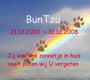 Buntzu